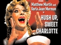 Hush Up poster
